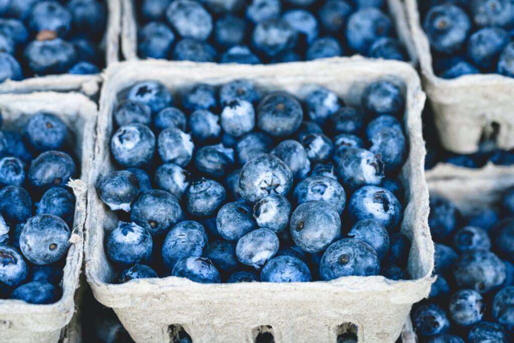 masker blueberry